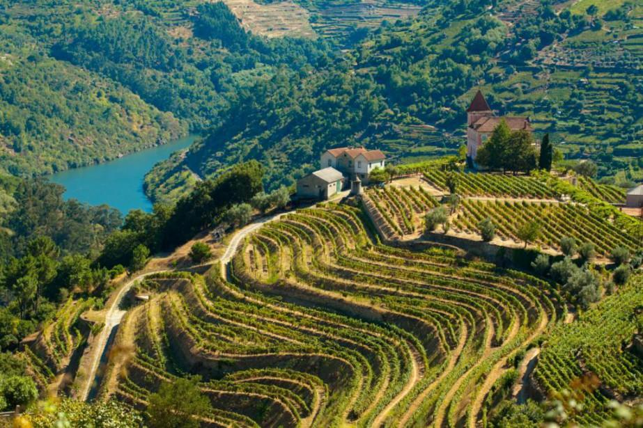 vins Portugal Douro