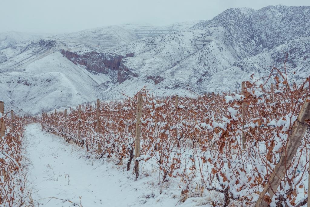 Hin areni vins armeni