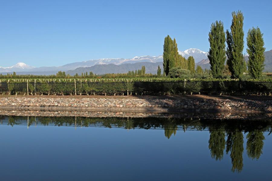 vins d'argentine casta del sur