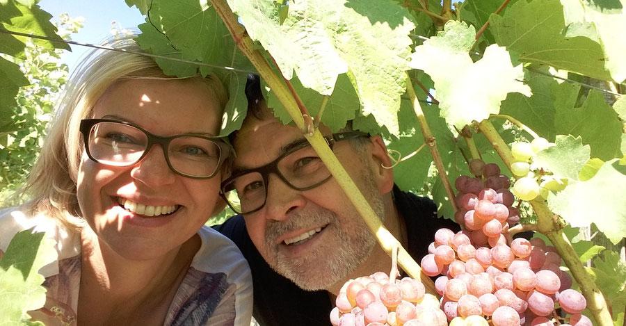 sutter vineyard austria vins autrichiens