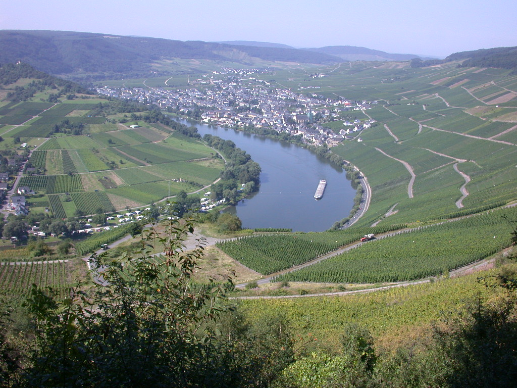 riesling mosel