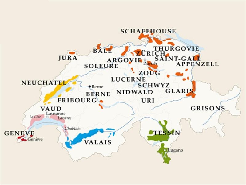 vignoble du valais suisse